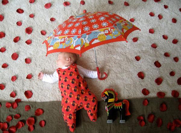 rainofroses
