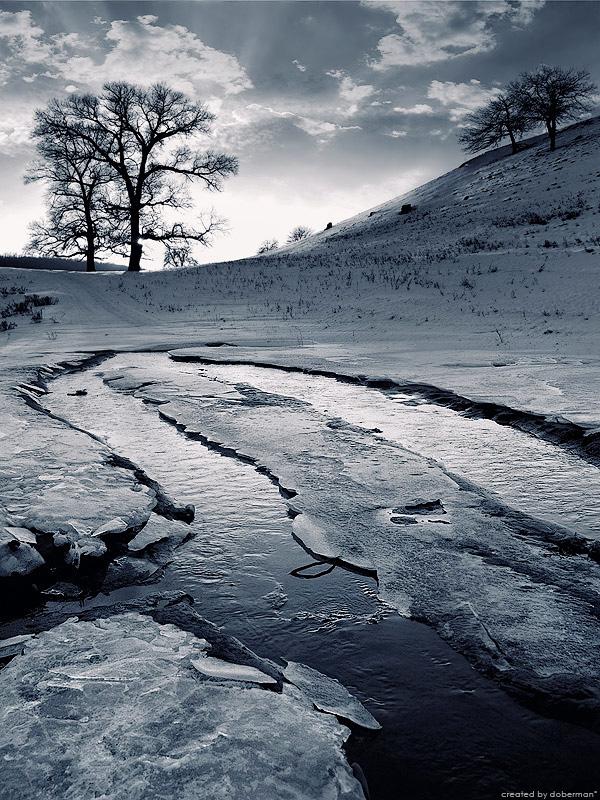 Зимние зарисовки от фотографа doberman* (13 фото - 2.49Mb)