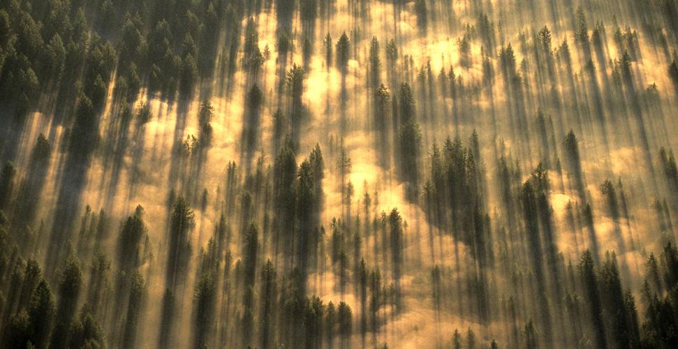 Земля с высоты птичьего полета... Фотограф Art Wolfe (21 фото - 1.73Mb)