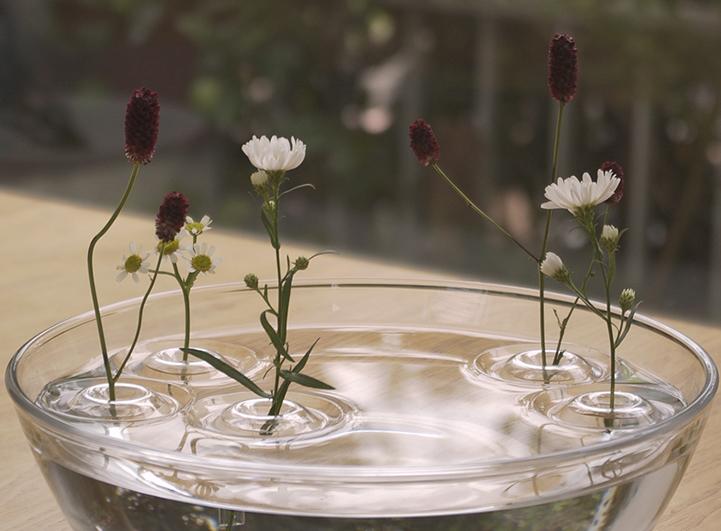 Иллюзия зависающего цветка с Floating vase