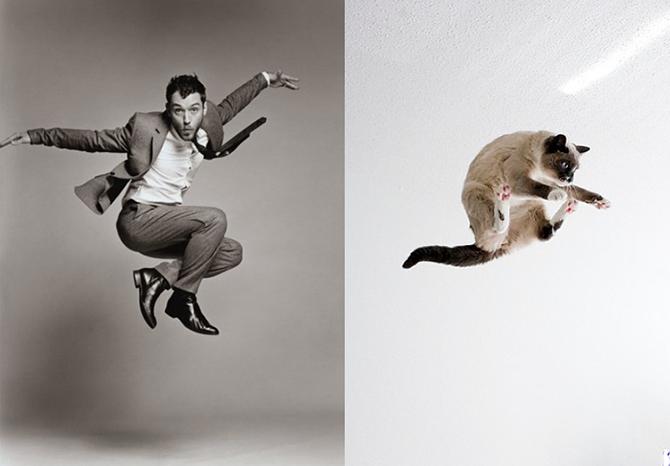 Мужчины vs Котята