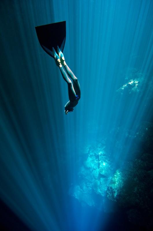 Погружение фридайверов «One ocean One breath»