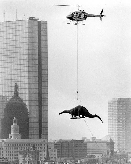 Доставка динозавра / Фото дня