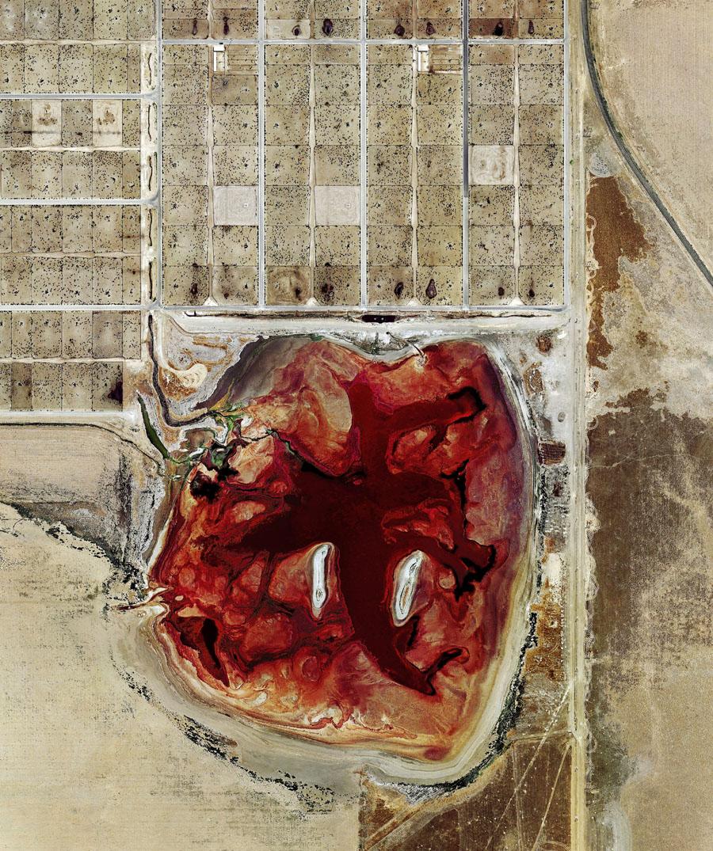 Крутые фотографии животноводческих ферм в США