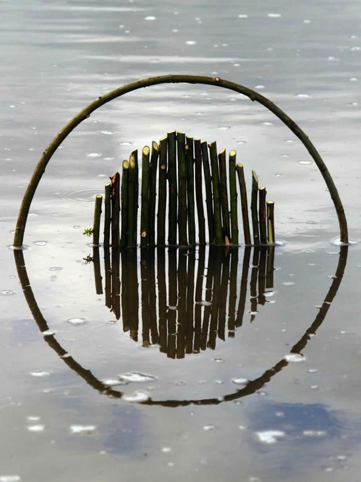 Геометрическая гармония в природе