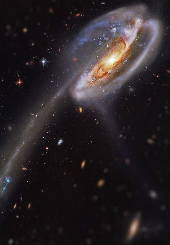 Tadpole-Galaxy