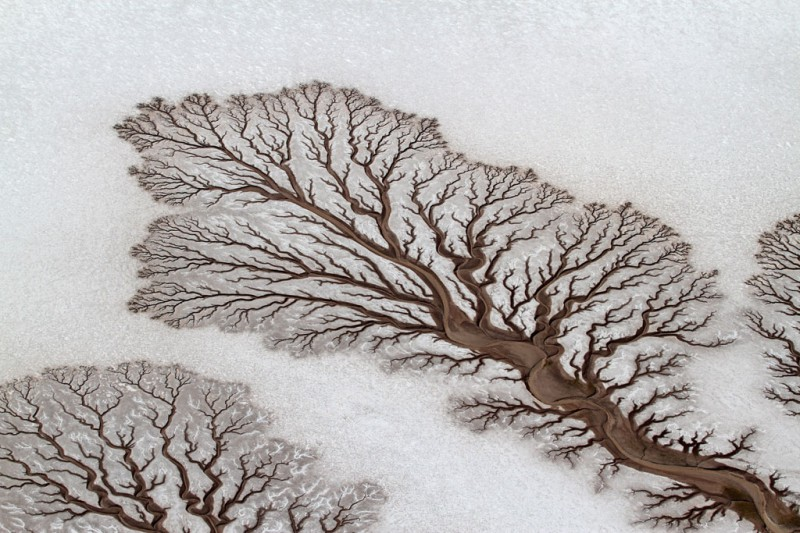 04-tree-like-rivers