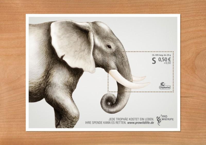 Pro-Wildlife-Campaign1