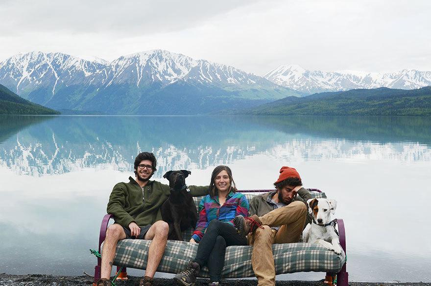Три друга, две собаки и диван