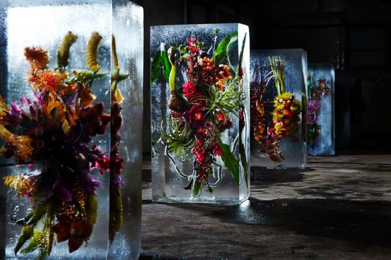 iced-flowers-makoto-azuma-3