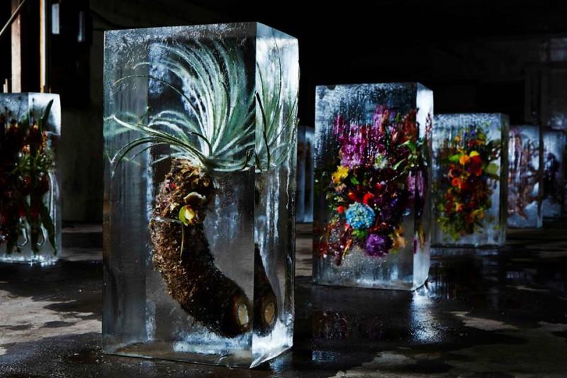 iced-flowers-makoto-azuma-5