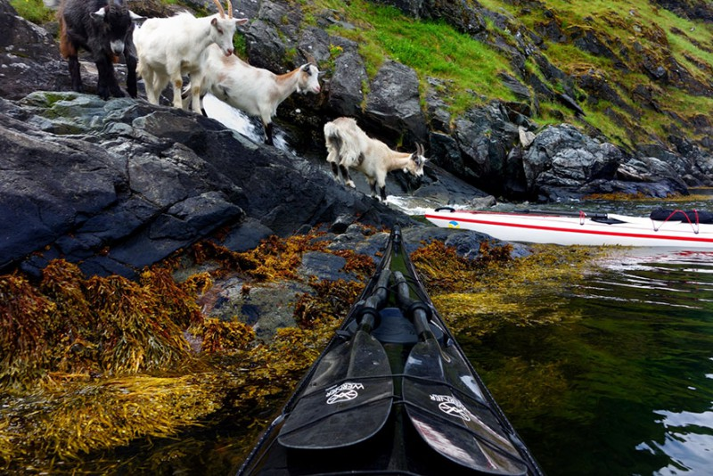 travel-kayak-photography-fjords-tomasz-furmanek-norway-16