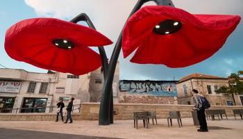 Гигантские цветы на площади Vallero