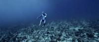 Полёт под океаном